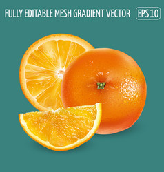 Whole orange and orange slices on a green vector