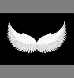 realistic white angel wings vector image vector image