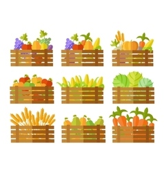 Set of Boxes With Fruits and Vegetables in vector image vector image