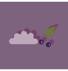 Flat with shadow icon dumplings cherries vector