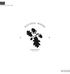 natural wood logo template vector image