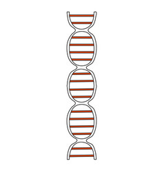 color silhouette image front view dna molecule vector image vector image