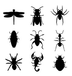 insect bug animal silhouette icon black vector image vector image