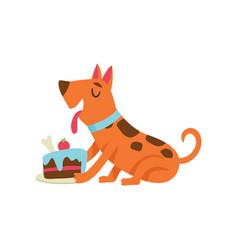 Cute dog eating cake funny cartoon animal vector