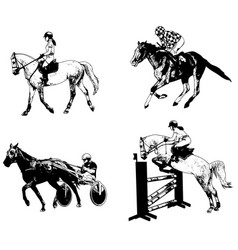 equestrian sports set sketch vector image