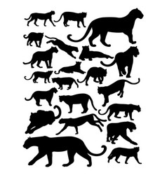 silhouette panther vector image