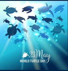 world turtle day 23 may background turtle swims vector image