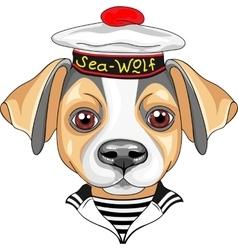 cartoon dog Jack Russell Terrier sailor vector image vector image