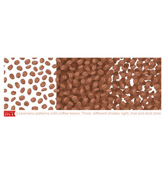 3 coffee beans seamless pattern vector image
