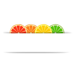 Citrus with paper banner vector image