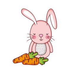 cute animals rabbit with carrots cartoon isolated vector image