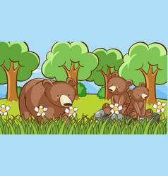 Grizzly bears in forest vector
