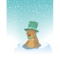 groundhog with a hat and bow tie vector image