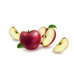 Red apples on a background vector