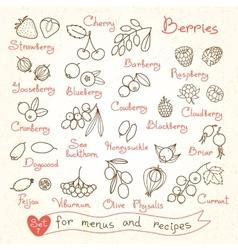 Set drawings berries for design menus recipes vector