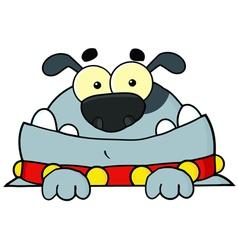 Gray Bulldog vector image vector image
