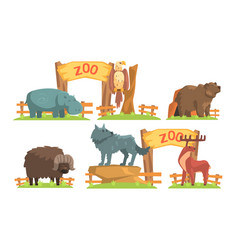 Animals in zoo set hippo eagle bear bison vector