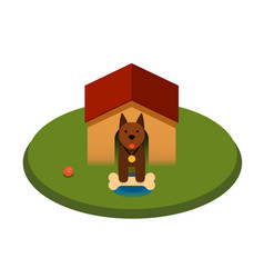 brown puppy dog with bone in the doghouse - flat vector image