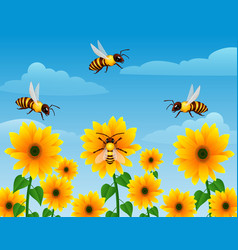 cartoon wasp flying over sunflower field vector image