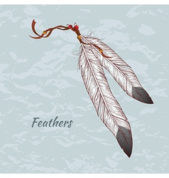 colorful of feathers vector image