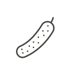 cucumber icon outline organic food line v vector image