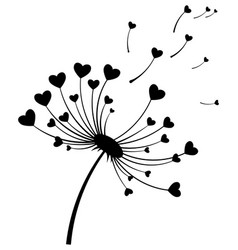 dandelion with hearts black and white dandelion vector image