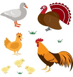 Farm animals set 4 vector