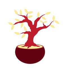 isolated bonsai icon vector image