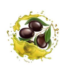 olive oil splashing isolated vector image