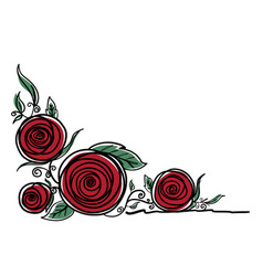 rose flowers on white background vector image