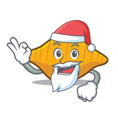 Santa conchiglie pasta mascot cartoon vector