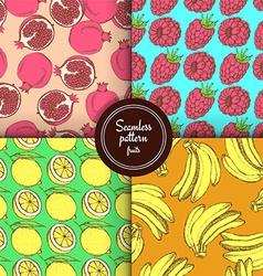 Sketch set of fruits patterns vector image