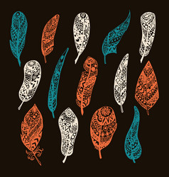 set of feathers hand drawing with vector image