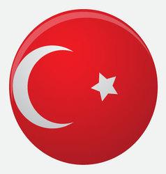 Turkey flag icon flat vector image