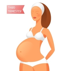 Pregnant women in third trimester of pregnancy vector image vector image