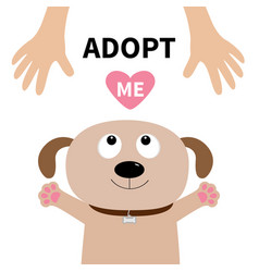 Adopt me dog face pet adoption puppy pooch vector