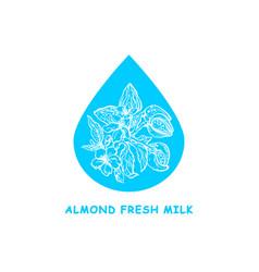 almond milk drop hand drawing sign vector image