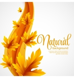 Autumn maple leaves on wave background vector