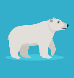 cute big polar white bear icon isolated on blue vector image