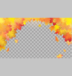 Falling autumn maple leaves on transparent vector