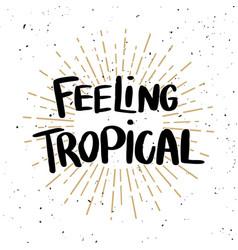 feeling tropical lettering phrase on light vector image