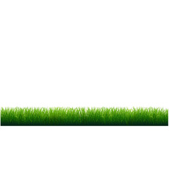 grass frame with white background vector image
