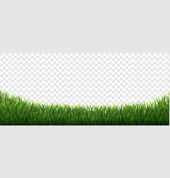 Grass frames set in isolated transparent vector