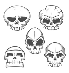 Old human or monster skulls sketches vector image