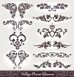 set ornaments vector image