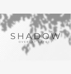 Shadow overlay effect transparent soft light vector