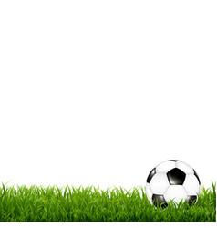 soccer ball with grass border vector image