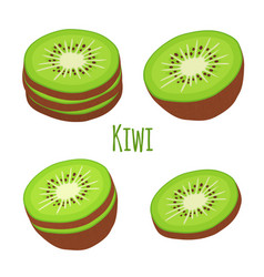 tropical fruit exotic kiwi set flat style vector image