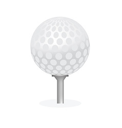 Golf ball on tee isolated vector image vector image