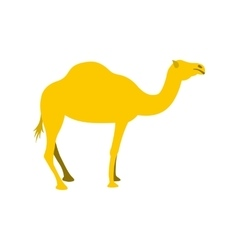 Camel icon flat style vector image